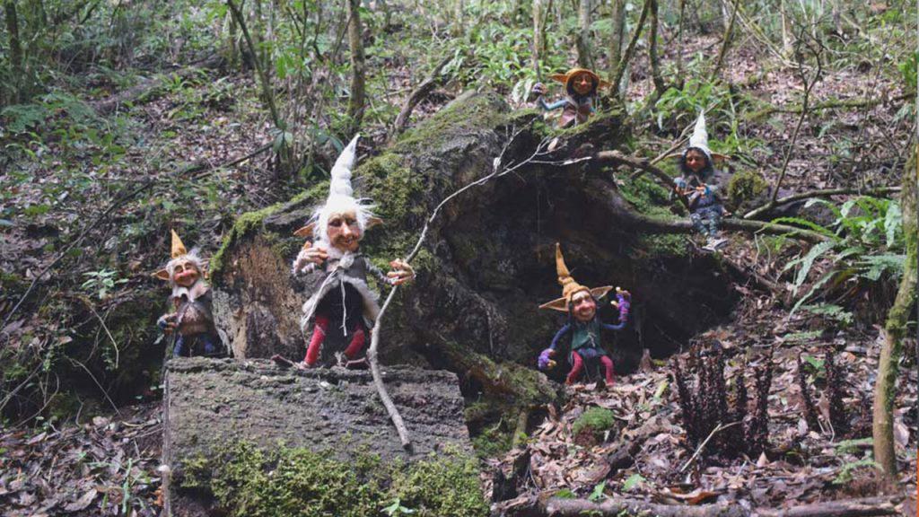 cual es el bosque de los duendes en hidalgo